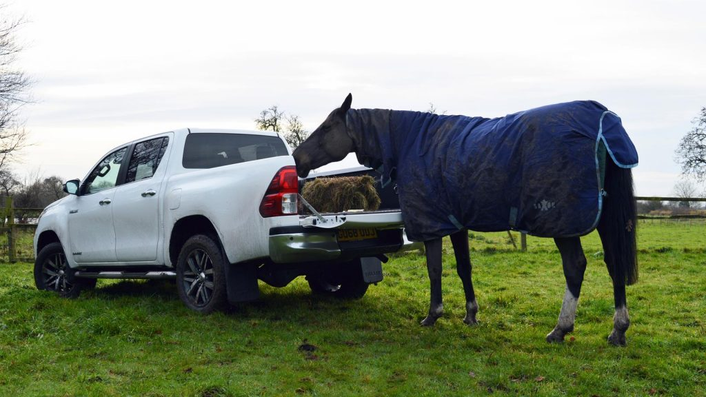 Toyota Hilux Invincible X facelift and horse